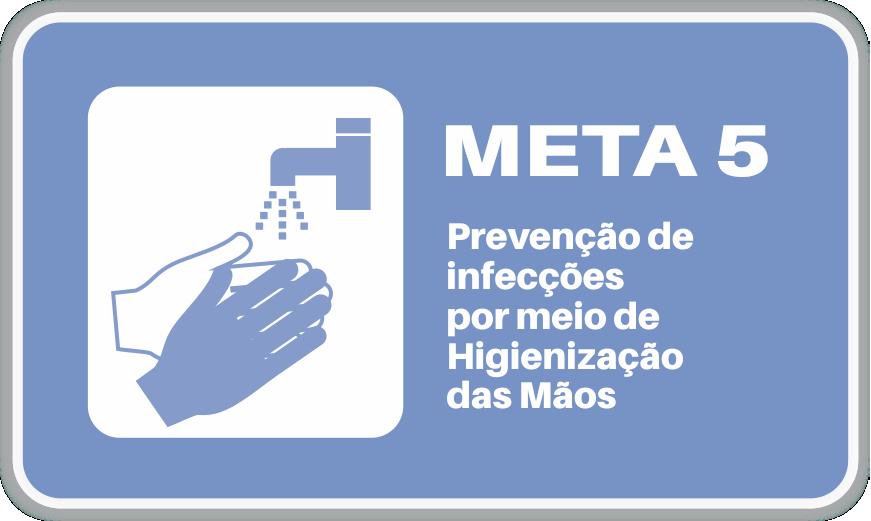 Meta 5