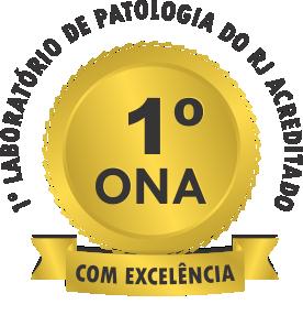 ONA Nível 3